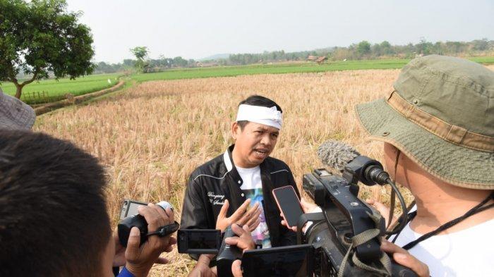 Dedi Mulyadi Bongkar Beras Asal Vietnam Masuk Indonesia dan Dijual Murah Di Pasar Cipinang