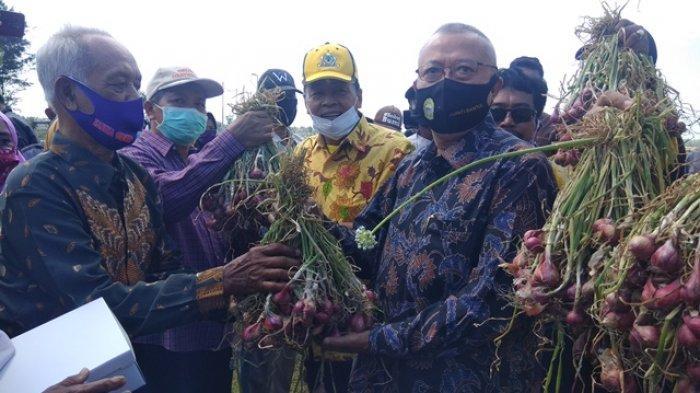 Bela Petani Bantul, Gandung Pardiman Bakal Bentuk Tim Antisipasi Kelangkaan Pupuk