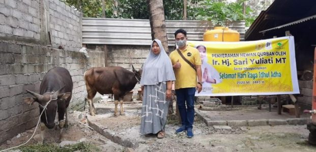 Sari Yuliati Tebar Puluhan Sapi Kurban di Pulau Lombok, NTB