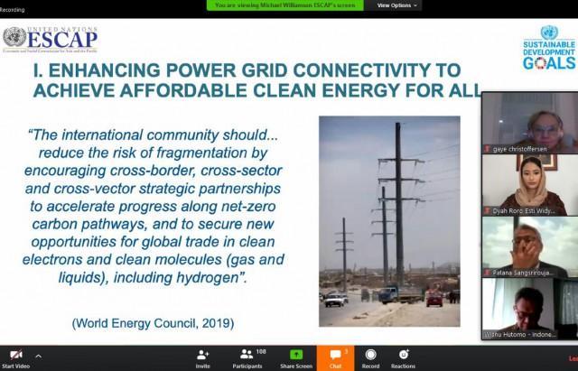 Saat Dyah Roro Esti Bicara Energi Baru Terbarukan di Sidang Virtual PBB