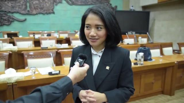 Puteri Komarudin Dorong Bank Himbara Akselerasi Penyaluran Stimulus PEN Untuk UMKM